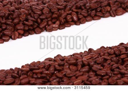 Diagonal Coffee Beans On A White Background
