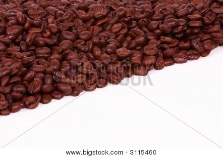 Diagonal Coffee Beans On White