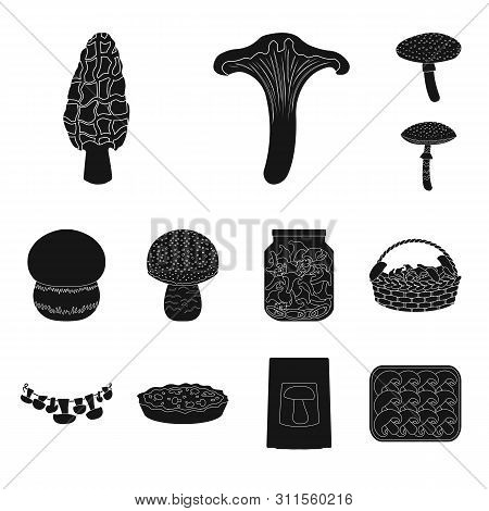 Vector Illustration Of Variety And Ingredient Sign. Collection Of Variety And Food Stock Vector Illu