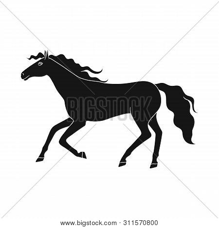 Isolated Object Of Steed And Brown Symbol. Set Of Steed And Gallop Stock Symbol For Web.