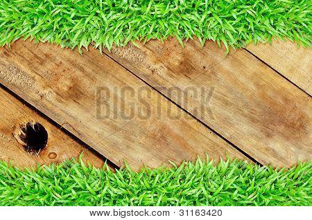 Grass Frame On Wood Hole