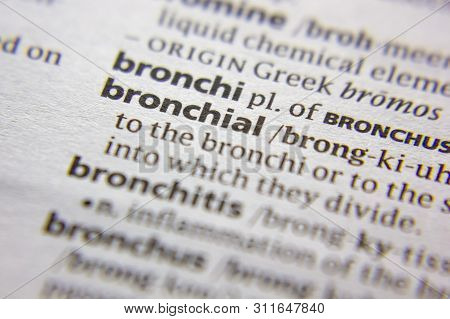 Word Or Phrase Bronchial In A Dictionary
