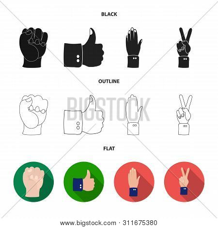 Vector Design Of Animated And Thumb Symbol. Collection Of Animated And Gesture Stock Vector Illustra