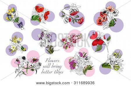 Large Set With Monochrome And Color Different Flowers And Pink And Lilac Circles. Hand Drawn Ink And