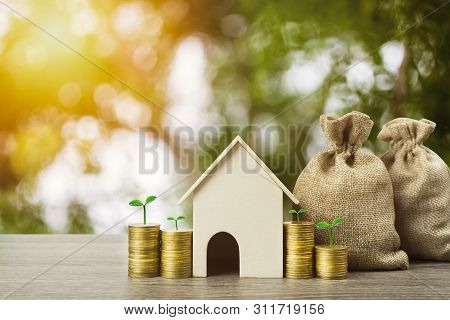 Saving Money Or Property Investment Or Buy A New Home Concept. A Small House Model With Growth Plant