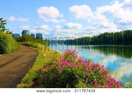 Riverwalk Pathway Surrounding The Willamette River Besides Lush Plants And Flowers Taken At A Park I