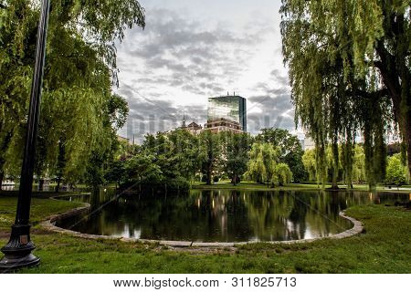 Boston Public Garden Park Pond Reflects The Weeping Willow Tree Branches Hanging Over The Surface Of