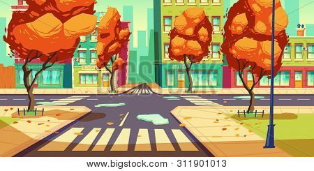 City Crossroad In Autumn Time, Empty Transport Intersection With Zebra Crossing, Puddles And Fallen