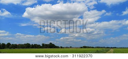 White Clouds In The Blue Sky Natural Background Beautiful Nature Space For Write Nature Rice Tree Gr