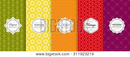 Vector Geometric Seamless Pattern Collection. Set Of Bright Colorful Background Swatches With Elegan