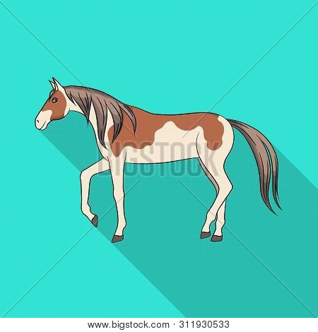 Vector Design Of Horse And Steed Logo. Set Of Horse And Western Stock Symbol For Web.