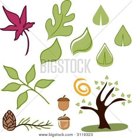 Vector set of leaf graphic design elements