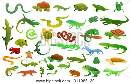 Reptiles Amphibians Icons Set. Cartoon Set Of Reptiles Amphibians Icons For Web Design