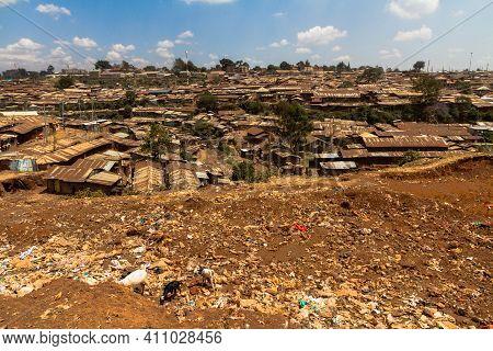 Goats Eat Through A Garbage Pile Next To Part Of The Kibera Slums In Nairobi, Kenya.