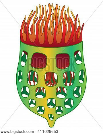 Infusoria Tintinnid - Vector Full Color Illustration, Tintinnid - Ciliate Building A House, Unicellu
