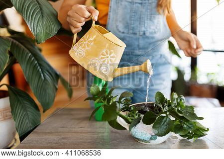 Close-up Of A Girl Watering Plants After Transplanting Into A New Pot. Home Gardening, Plant Care, H