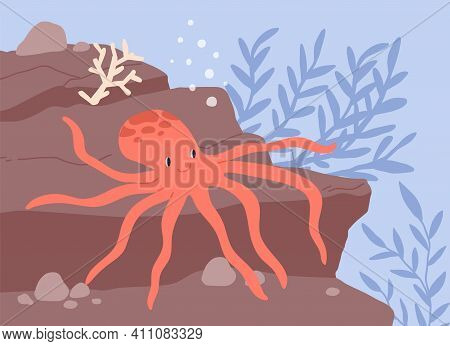 Underwater Life Of Cute And Funny Octopus Resting At Seabed Among Seaweeds. Smiling Animal At Sea Or