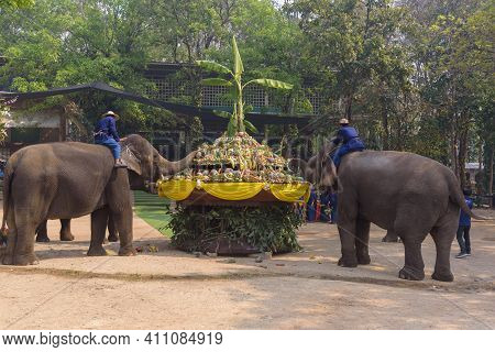 At The Thai Elephant Conservation Center Lampang Province Are Offering A Large Catering Fruit Buffet