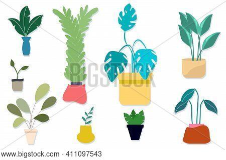Potted Indoor Plants Set, Indoor Vector Flowers Large Set