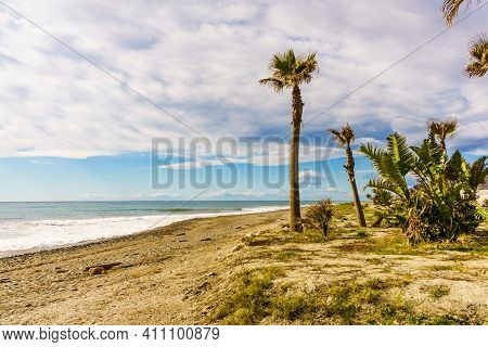 Seaside Landscape. Carchuna Sandy Beach With Palm Trees. Costa Tropical, Province Granada. Andalucia