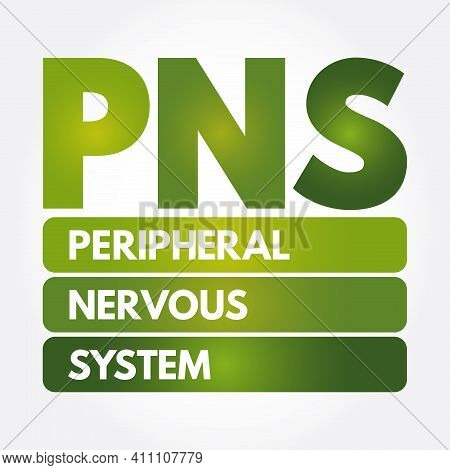 Pns - Peripheral Nervous System Acronym, Medical Concept Background