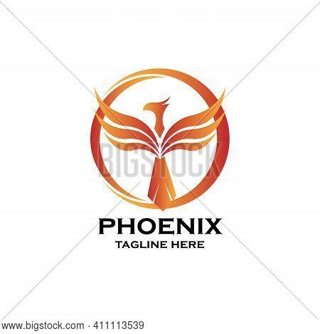 Phoenix Design Logo Illustration Vector. Phoenix Logo Vector