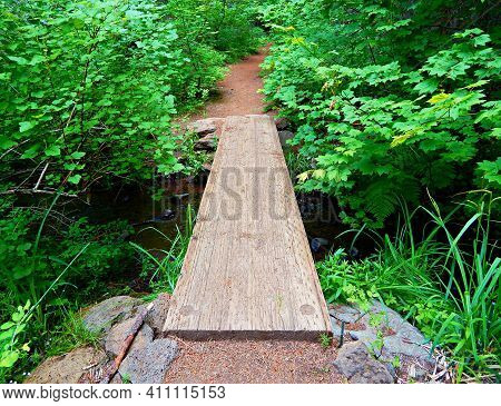 A Walk In The Green Forest - A Boardwalk Over A Brook Along The West Bank Metolius River Trail By Wi