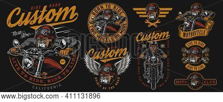 Custom Motorcycle Vintage Prints With Inscriptions Angry Bulldog Biker Wrenches Ferocious Dog Head I