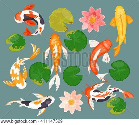 Koi Carp Fishes Set, Asian Prosperity Fortune Lucky Symbol And Pink Lotus, Green Leaf