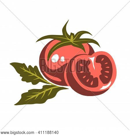 Hand Drawn Illustration Of Red Appetizing Tomato Vegetables On White Background. Healthy Eating. Vec