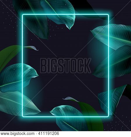 Tropical Elegant Frame Arranged From Exotic Emerald Leaves Design Vector. Paradise Plant, Greenery C