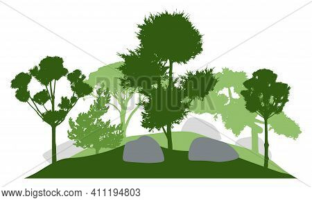 Silhouette Of  Garden With Decorative Trees. Beautiful Coniferous Trees. Vector Illustration.
