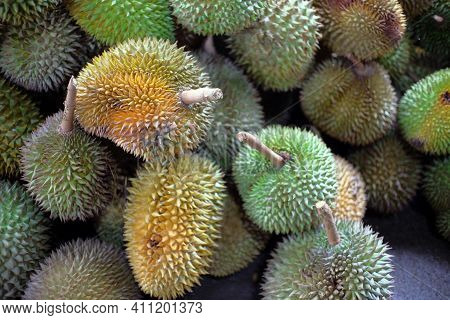 Durian Fruit - Durian Fruit In Large Quantities, Durian Fruit In The Market, Durian Fruit In A Baske