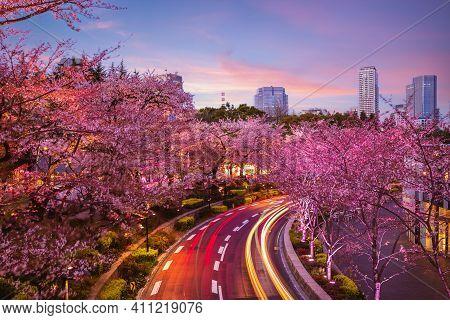 Night View Of Tokyo Midtown In Roppongi,  Japan