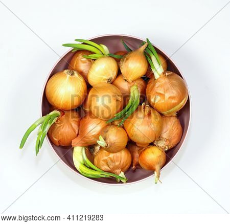 Onions In A Bowl, White Background, Flat Lay. Onion Bulbs In Spring, Some Of Them Are Germinating.
