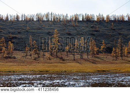 Coast Of The Wild Siberian Taiga River With Mounds Of Glacial Erosion. Traces Of Permafrost Melting