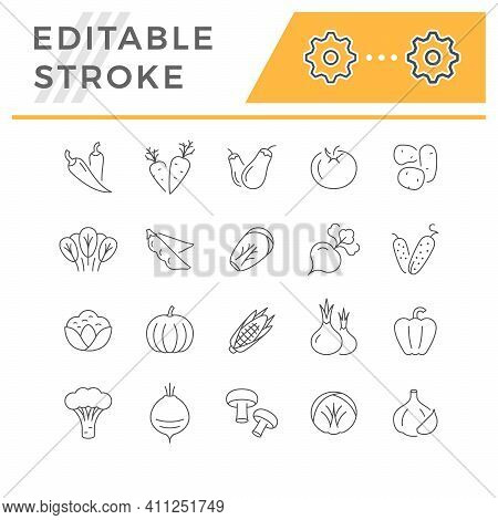 Set Line Icons Of Vegetables Isolated On White. Red Chilli, Mushrooms, Carrot, Brinjal, Cauliflower
