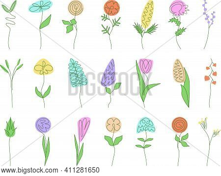Set Of Simple Minimalistic Oneline Drawing Colorful Flowers. Floral, Herbs, Leaves Collection. Botan