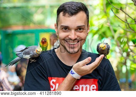 The Guy In The Bird Park Communicates With Parrots. Tame Parrots Beg For Food From Tourists. Langkaw