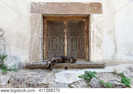 A Dark Motley Cat Sleeps Sweetly On The Stone Windowsill Of An Old House On A Hot Summer Day