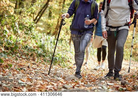 Hikers hiking at autumn, concept