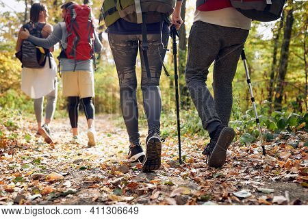 Back view of hikers while hiking in nature, concept