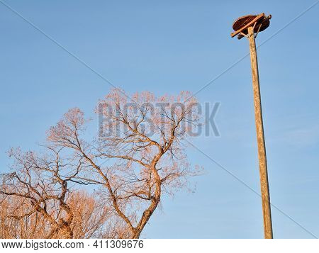 osprey nesting platform in a natural area along the Poudre River in Fort Collins, Colorado