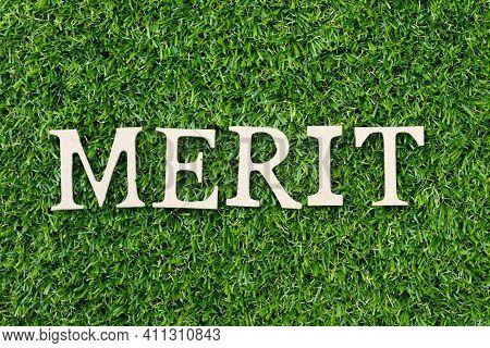 Wood Alphabet Letter In Word Merit On Green Grass Background