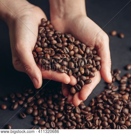 Coffee Beans In Hands Aroma Morning Vigor Drink