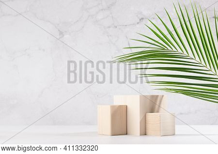 Tropical Design For Presentation And Product Display - Cube Wood Podiums With Green Palm Leaf, Sunli