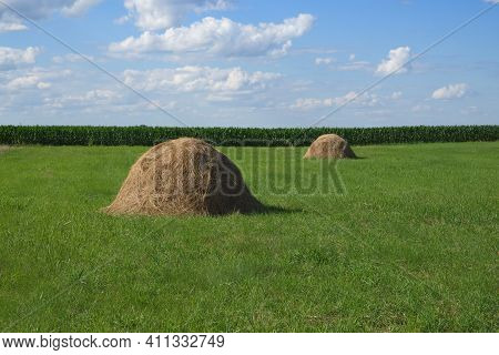 Haystacks On A Green Meadow Under A Blue Sky. Picturesque Pastoral Landscape. Farmland On A Clear Su