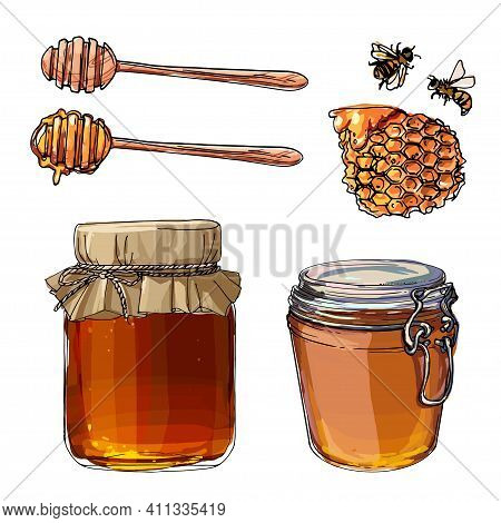 A Jar Of Honey, Strawberry Jam In A Glass Jar. Berries. Vector Colored Food Sketches On White Backgr