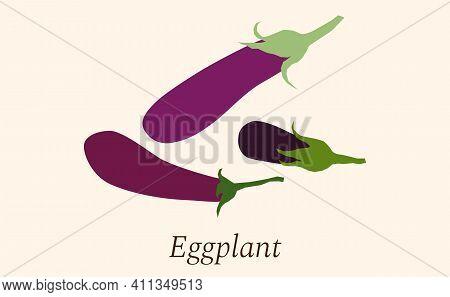 Fresh Eggplant Vegetable Isolated Icon. Eggplant For Farm Market, Vegetarian Salad Recipe Design. Ve
