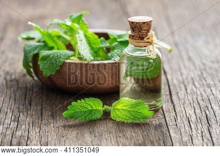 Glass Bottle Of Melissa (lemon Balm) Essential Oil With Fresh Melissa Leaves, Herbal Medicine Concep